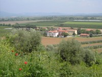 Construction land for sale in Castellaccia