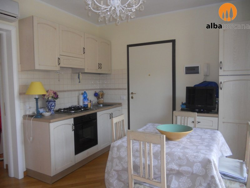 Nearly new furnished one-bedroom flat with terrace for sale in Vaticino